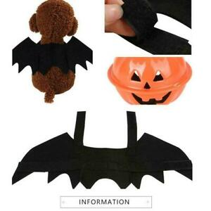 Creative cats and dogs bat transformed into costumes M8F5
