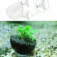 Fish Tank Aquarium Wasserpflanze Glas Tasse Red Garnelen-Halter DE B0Z7 I7H D4U4