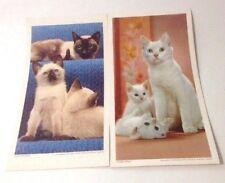 "Walter Chandoha Puss N Boots Cat Prints 6.5"" x 12"" Set of 2 Vintage 1961 Rare"