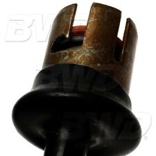 Combination Lamp Socket-License Lamp Socket BWD PT32