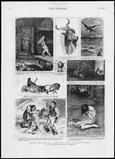 1882 Antique Print - NORWEGIAN FOLK FAIRY TALES ROUND YULE LOG SKETCHES (153)
