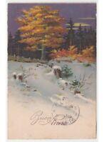 1927 Tarjeta Postal Navidad Nieve Roble con Escrito Rojo Bosque Abetos Antigua