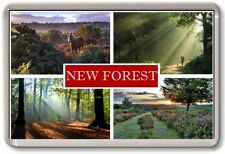 FRIDGE MAGNET - NEW FOREST - Large - Hampshire TOURIST