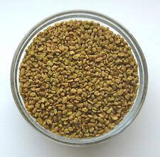 Fenugreek Seed, Whole 1 oz. - The Elder Herb Shoppe