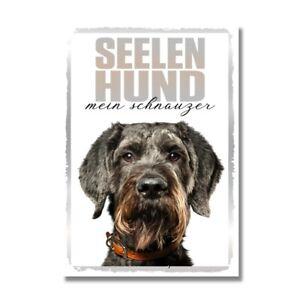 Schnauzer Seelenhund Dog Schild Spruch Türschild Hundeschild Warnschild Soulmate
