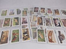 A Series of 48 WILD ANIMALS HORNIMAN'S TEA Collectors Cards 1958