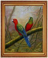 Ölbild Papagei, handgemaltes Ölgemälde, Papageibilder F: 50x60cm