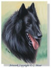Belgian Shepherd Sheepdog Dog Headstudy OE Art Print Groenedael