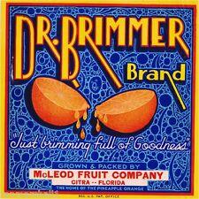 Citra Florida Dr. Brimmer Brand Orange Citrus Fruit Crate Label Art Print
