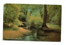 Hampshire - New Forest, Highland Water - Postcard Franked 1977