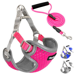 Step In Breathable Mesh Pet Dog Harness&Leash Durable Reflective Blue Pink Gray
