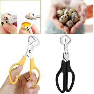 Pigeon Quail Egg Scissors Cracker Opener Stainless Steel Tool