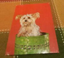 Retro Postcard: Yorkshire Terrier Dogs
