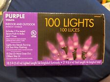 Party City Purple 100 Lights 21 Ft Indoor And Outdoor