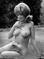 1960s Large breasts & Big hair Nude Model 5 X 7  Photograph