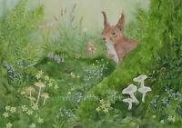 Squirrel painting watercolour original red wildlife animal flowers toadstools