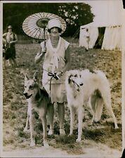 Ga63 1920s Original Photo Hertfordshire Canine Society Open Show Alsatian Borzoi