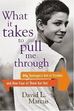 What It Takes to Pull Me Through : Why Teenagers Get in Trouble and How Four of…