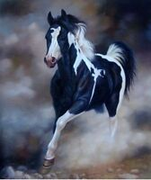 SFPAT87 100% hand-painted modern black white horse art oil painting  on canvas