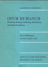 Shettles, Ovum Humanum, Wachstum Reifung Ernährung Befruchtung frühe Entwicklung
