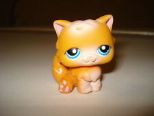 Littlest Pet Shop Orange & White Persian Cat Blue Eyes #153 LPS Hasbro Kitten