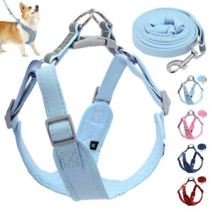 Solid Step-in Pet Harness and Leash Set Soft Walk Vest for Chihuahua Dachshund