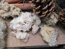 pine resin, raw pitch tar 1 oz.