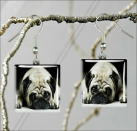 DOG PUG SAD FACE SQUARE GLASS CABOCHON EARRINGS -dre3Z