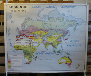 Vintage French School Map from 60s/70s double sided World Vegetation and Plants