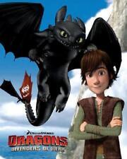 Dragons : Defenders of Berk - Mini Poster 40cm x 50cm new and sealed