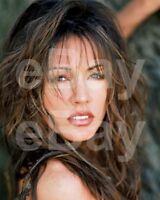 Krista Allen 10x8 Photo