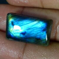 25.80Cts Natural Multi Fire Spectrolite Labradorite Cushion Cab Loose Gemstone 4