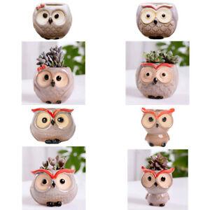 Cute Owl Shaped Plant Pot Ceramic Flower Holder Mini Planter Home Garden Decor