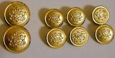VINTAGE WATERBURY  BUTTONS SET OF 8 GOLD TONE  CROWN DOUBLE LION CREST
