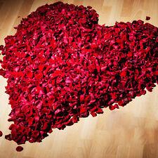 1000Pcs Various Colors Silk Flower Rose Petals For Wedding Party Decoration US