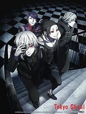 Tokyo Ghoul Group 29.5'' x 42'' Cloth Poster Anime Manga NEW