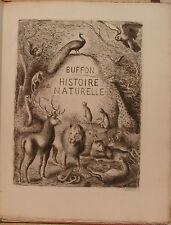 BUFFON. HISTOIRE NATURELLE. AVEC 39 EAUX-FORTES DE DEMETRIOS GALANIS. 1939