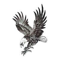 Adler Einmal Tattoo Temporary Tattoo Vogel Temporäre Tattoo Body Sticker 21x15
