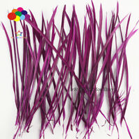 Goose Feathers 20-25cm 8-10inch Carefully Crafted Smooth Dyed Plum Biots Juju