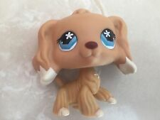 Littlest Pet Shop RARE Cocker Spaniel Dog #748 POINTED EYES Yellow White Dipped