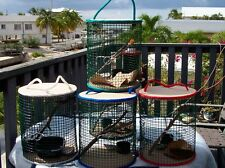 GOT CRABS? HANDMADE HERMIT CRAB CAGES- KEY WEST STYLE