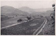 D3275 Cagliari - Coltivazioni lungo il Rio Girasole - Stampa - 1927 old print
