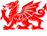 Welsh Dragon CYMRU RED Vinyl Car Window Bike Bumper Decal / Sticker / Graphic