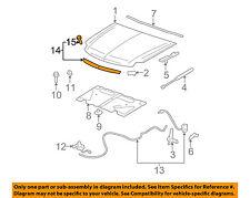 Cadillac GM OEM 07-14 Escalade Hood-Molding 15907251