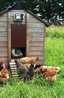 Automatic Chicken Coop Door Opener Hen House Poultry, Heavy Gear Motor 5Kg Lift.