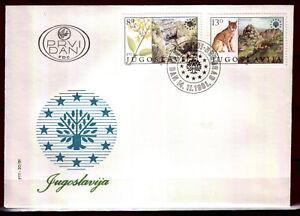 1909 - Yugoslavia 1981-Nature Protection-Lynx-Canyon - FDC