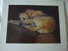 More details for great dane limited edition dog print for framing. by malcolm coward 200/500