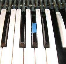 Vox Continental Baroque or Jaguar Organ Amp Part:  Black Bass Section Sharp Key