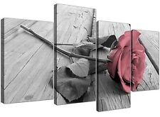 Large Pale Pink Rose in Black and White - Set of 4 Floral Canvas - 130cm Wide