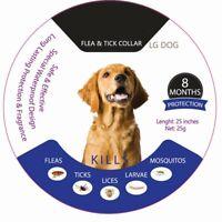 Ajustable Pulgas y Garrapatas Collar Anti Insecto para Mascota Perro Gato 8 Mes